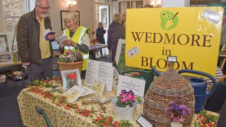 Wedmore in Bloom display at Wedmore Health and wellbeing day. Picture: MARK ATHERTON