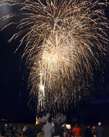 Weston Fireworks Party. Picture: Arthur Bruce