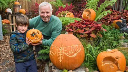 Middlecombe Nursery Pumkin Trail. Owner Nigel North with 5-year-old visitor Asher. Picture: MARK A