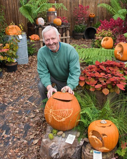 Middlecombe Nursery Pumkin Trail. Owner Nigel North. Picture: MARK ATHERTON