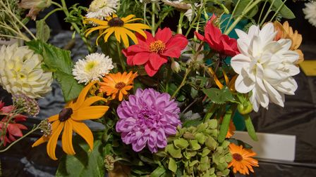 Beautiful flowers bloom at Yatton Autumn Show. Picture: MARK ATHERTON