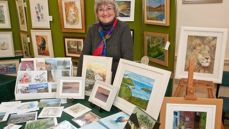 Artist Chris Wilcox sells an array of cards printed with her designs at Wrington arts fair. Pictu