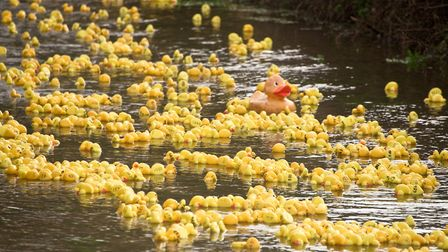Banwell Scout Group Boxing Day Duck Race. Picture: MARK ATHERTON