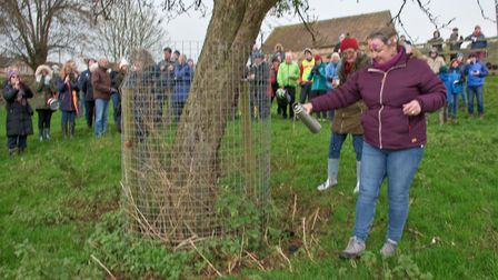 Apple Queen Lesley Barwick at Blagdon Wassail in the Community Orchard. Picture: MARK ATHERTON
