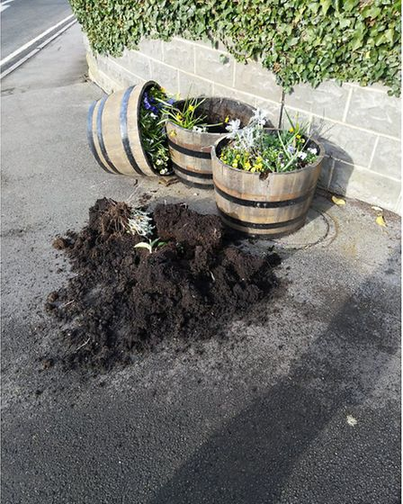 The vandal targetted the floral displays in Hutton