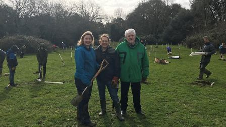 Councillors came to help plant new young trees