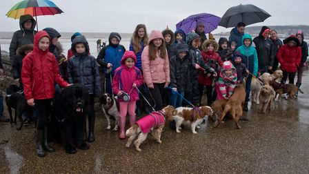 Worlebury Primary School charity dog walk along Weston and Uphill beach. Picture: MARK ATHERTON