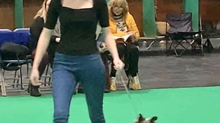 Makayla Nunn at Crufts. Picture: Shane Dean