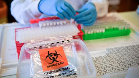 Seven more cases have been diagnosed in North Somerset.