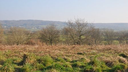 The greenbelt could be redrawn to make way for thousands of new homes.