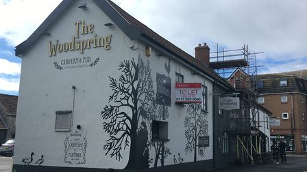 The Woodspring. Picture: Henry Woodsford