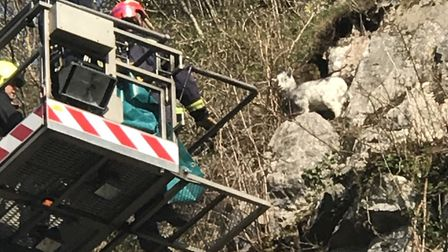 Firefighters rescuing a kid goat at Cheddar Gorge. Picture: RSPCA North Somerset