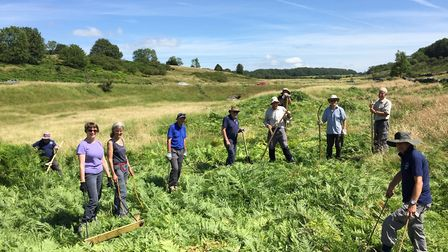 Mendip Hills AONB has gained more than £1k from Tesco Bags of Help. Picture: Mendip Hills AONB
