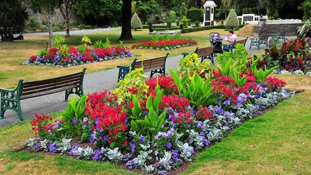 The Weston Flower show will now take place virtually.