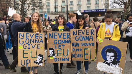 People's Vote Placards (Dan Hall/Supplied)