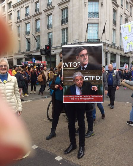 People's Vote Placards (Joan T/Supplied)