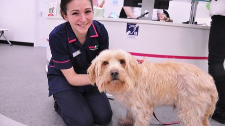 The new Vets4Pets store opened at Pets at Home on Friday.