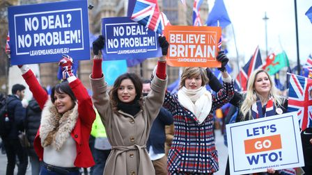 Pro-Brexit supporters advocate a no-deal Brexit outside the Houses of Parliament