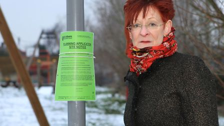 Local resident Carol Hedges next a childrens playground, near where the proposed road would go