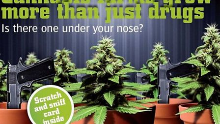 Crimestoppers have sent scratch and sniff cards as part of its cannabis cultivation campaign