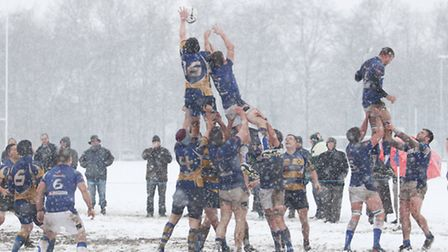 St Albans win a line out