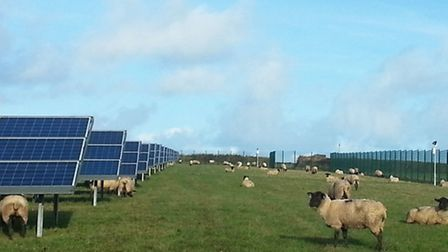 The Thrift Farm solar farm could look like this, another of Lightsource's farms