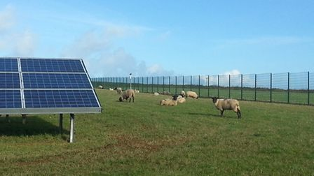 A virtual image of what the solar farm might look like