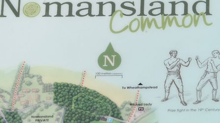 Information sign on Nomansland Common depicting prize fighting during the 19th century