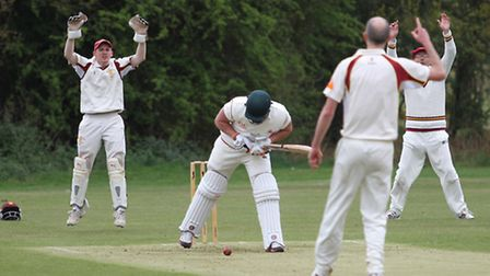 Wheathampstead appeal unsuccessfully for LBW