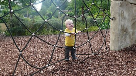 Theo and the spider web at the adventure playground, Stockwood Discovery Centre