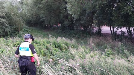 The search at Stukeley Meadows