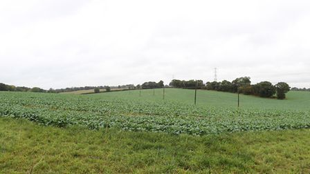 The proposed site for an array of solar panels in Redbourn as seen from the corner of Hemel Hempstea