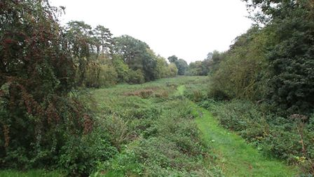 The proposed site for 2 new ponds in the run off area for the existing ponds
