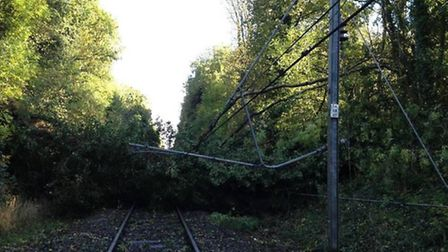 A fallen tree blocking the railway line in St Albans
