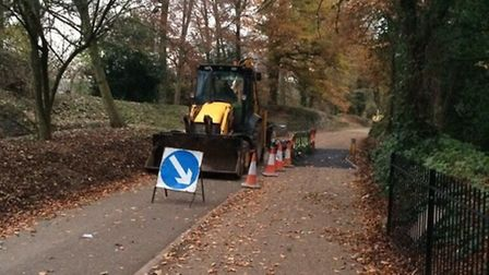 Speed humps are being removed from Verulamium Park