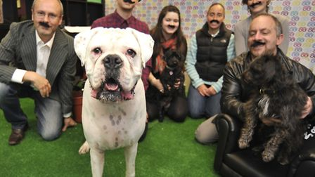 Woof & Brew, in St Ives, have launched Movember campaign for dogs, (l-r) Steve Bennett, Frank the do