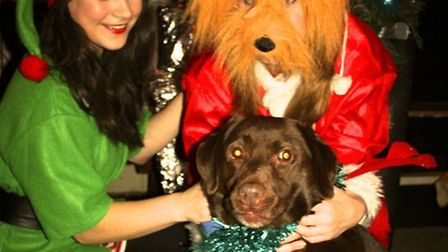 Santa Paws, his elf helper, and Dylan, the publican's dog, enjoy the canine focused event