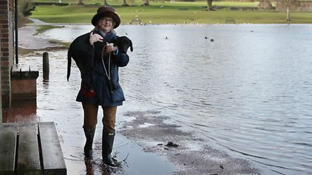 Truffle the Black Labrador has to be carried across the flooded footpath