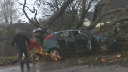 Tree falls on top of car in Hartford during storm. Picture: Alastair Hill