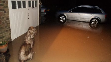 A 100 year old cottage at Radlett Grooming Centre, Harper Lane, was flooded on Friday