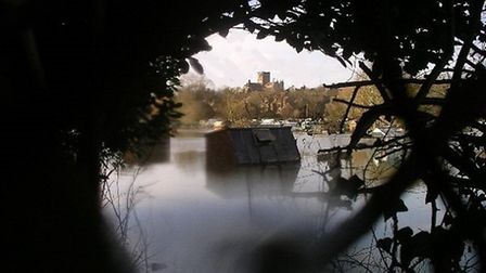Allotments flooded at Cottonmill Lane, Sopwell, St Albans. Photo supplied by Peter Wares