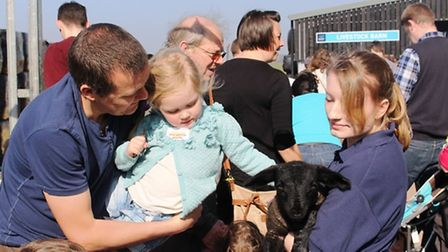 Lambing Day at Oaklands College