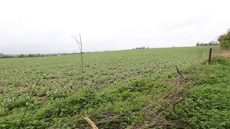 The land opposite Redbourn golf club which has been earmarked for a solar panel array