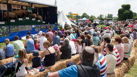 Crowds flocked to the sheep show (Pic: Tim Somervell)