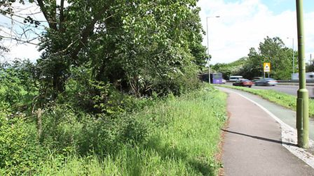 A gap in the fence next to the A414 where travellers horses have been escaping and getting onto the