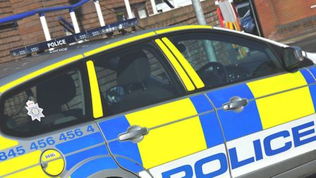 Police were called after a car collided with a pig