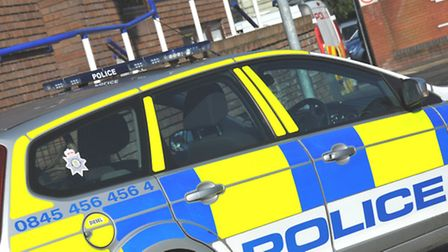 Police are appealing for information on the owner of the two Alsatians
