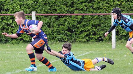 Cents U12s lost 36-24 to Brentwood Eels.