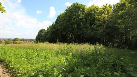 Land is for sale on Therfield Heath