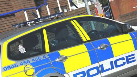 Police are appealing for witnesses to a theft in Harpenden, which saw an elderly woman's purse stole